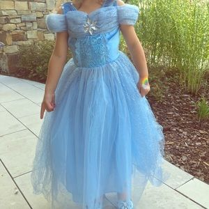 Princess dress and beautifully detailed crown